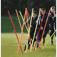 Set of 12 Boundary/Training Poles with Bag