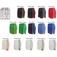 Juvenile Pairc GAA Shorts